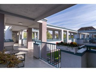 Photo 18: 303 7500 ABERCROMBIE DRIVE in Richmond: Brighouse South Condo for sale : MLS®# R2320536