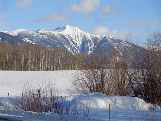 Photo 5: DL 3330 16 Highway in McBride: McBride - Town Land for sale (Robson Valley (Zone 81))  : MLS®# R2438514