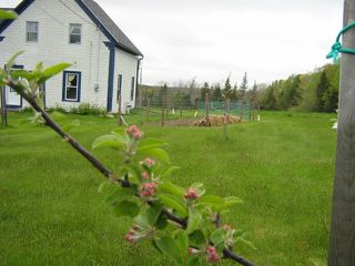 Photo 22: 4527 WEST DALHOUSIE Road in West Dalhousie: 400-Annapolis County Residential for sale (Annapolis Valley)  : MLS®# 202009762