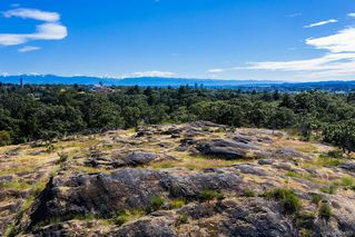 Photo 27: 3350 Maplewood Rd in Saanich: SE Maplewood House for sale (Saanich East)  : MLS®# 844903