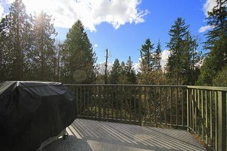 Photo 8: 23281 in Maple Ridge: Townhouse for sale : MLS®# V1073925