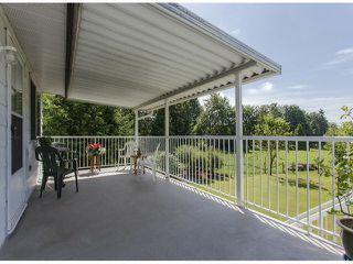 Photo 16: 29086 BUCHANAN Avenue in Abbotsford: Bradner House for sale : MLS®# F1418255