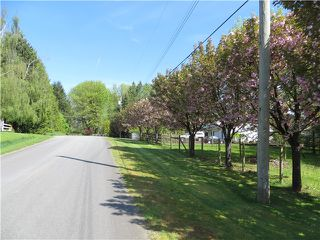 Photo 3: 29086 BUCHANAN Avenue in Abbotsford: Bradner House for sale : MLS®# F1418255