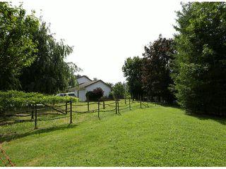 Photo 20: 29086 BUCHANAN Avenue in Abbotsford: Bradner House for sale : MLS®# F1418255