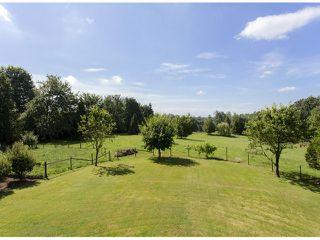 Photo 17: 29086 BUCHANAN Avenue in Abbotsford: Bradner House for sale : MLS®# F1418255