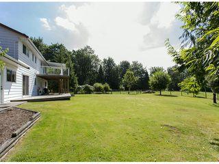 Photo 19: 29086 BUCHANAN Avenue in Abbotsford: Bradner House for sale : MLS®# F1418255