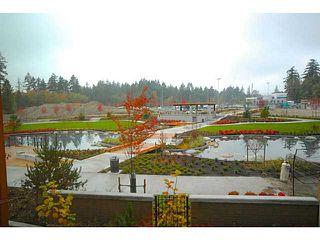 Photo 10: # 213 5983 GRAY AV in Vancouver: University VW Condo for sale (Vancouver West)  : MLS®# V1036124