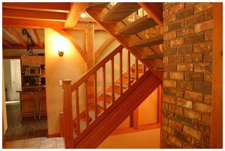 Photo 55: 3841 Turner Road: Tappen House for sale (Shuswap)  : MLS®# 10095484