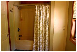 Photo 81: 3841 Turner Road: Tappen House for sale (Shuswap)  : MLS®# 10095484