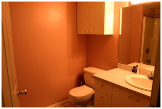 Photo 83: 3841 Turner Road: Tappen House for sale (Shuswap)  : MLS®# 10095484