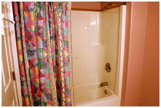 Photo 84: 3841 Turner Road: Tappen House for sale (Shuswap)  : MLS®# 10095484