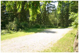 Photo 16: 3841 Turner Road: Tappen House for sale (Shuswap)  : MLS®# 10095484