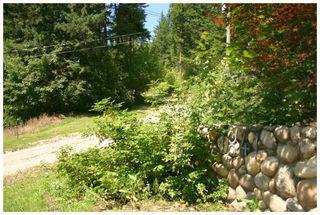 Photo 29: 3841 Turner Road: Tappen House for sale (Shuswap)  : MLS®# 10095484