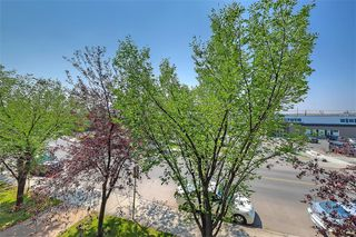 Photo 23: #201 15320 BANNISTER RD SE in Calgary: Midnapore Condo for sale : MLS®# C4201654