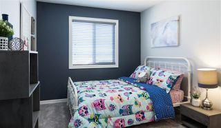 Photo 15: 22108 88 Avenue in Edmonton: Zone 58 House for sale : MLS®# E4178466