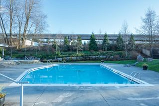 "Photo 33: 205 700 KLAHANIE Drive in Port Moody: Port Moody Centre Condo for sale in ""Boardwalk"" : MLS®# R2443143"