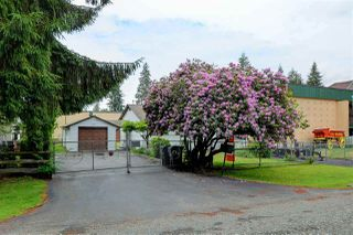 Photo 12: 9119 KING Street in Langley: Fort Langley House for sale : MLS®# R2491932