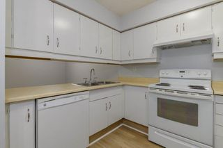Photo 5: 108, 22 Alpine Place in St. Albert: Condo for rent