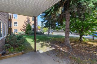 Photo 52: 108, 22 Alpine Place in St. Albert: Condo for rent