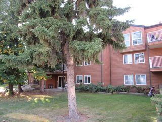 Photo 48: 108, 22 Alpine Place in St. Albert: Condo for rent
