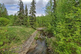 Photo 26: 7909 71 ST NW in Edmonton: Zone 17 Condo for sale