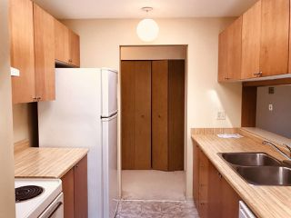 Photo 7: 229 7651 MINORU BOULEVARD in Richmond: Brighouse South Condo for sale : MLS®# R2291290
