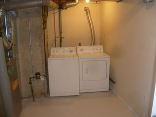 Photo 6: 40 Laurier Cres. basement suite in St. Albert: basement suite for rent