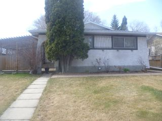 Photo 2: 40 Laurier Cres. basement suite in St. Albert: basement suite for rent
