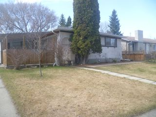 Photo 1: 40 Laurier Cres. basement suite in St. Albert: basement suite for rent