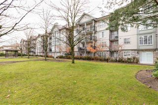 "Photo 17: 407 14859 100 Avenue in Surrey: Guildford Condo for sale in ""CHATSWORTH GARDENS"" (North Surrey)  : MLS®# R2420243"