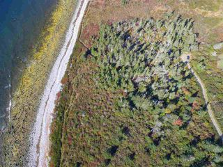 Photo 1: Lots 19-20 Youngs Road in East Green Harbour: 407-Shelburne County Vacant Land for sale (South Shore)  : MLS®# 202022915