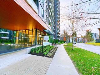 Photo 30: 802 3533 ROSS Drive in Vancouver: University VW Condo for sale (Vancouver West)  : MLS®# R2518338
