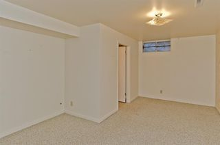 Photo 31: 1016 78 Avenue SW in Calgary: Chinook Park Detached for sale : MLS®# A1051571