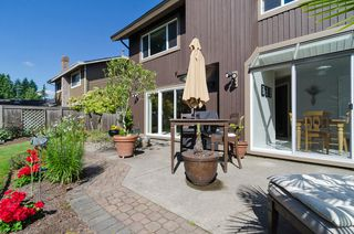 "Photo 49: 11648 HYLAND Drive in Delta: Sunshine Hills Woods House for sale in ""SUNSHINE HILLS"" (N. Delta)  : MLS®# F1417122"
