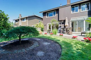 "Photo 50: 11648 HYLAND Drive in Delta: Sunshine Hills Woods House for sale in ""SUNSHINE HILLS"" (N. Delta)  : MLS®# F1417122"