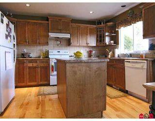 Photo 2: 9086 202B Street in Langley: Walnut Grove House  : MLS®# F2702272