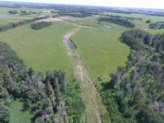Main Photo: Twp Rd 470 Rge Rd 244: Rural Wetaskiwin County Rural Land/Vacant Lot for sale : MLS®# E4170439