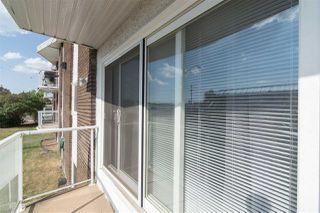 Photo 25: 207 11029 84 Street in Edmonton: Zone 09 Condo for sale : MLS®# E4173247