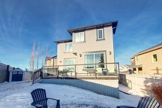 Photo 44: 95 MORNINGSIDE Mews SW: Airdrie Detached for sale : MLS®# C4282710
