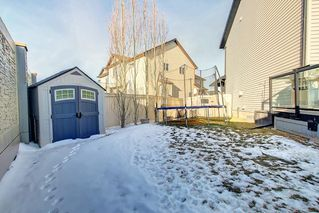 Photo 43: 95 MORNINGSIDE Mews SW: Airdrie Detached for sale : MLS®# C4282710