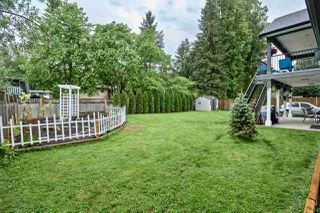 Photo 37: 20874 CAMWOOD Avenue in Maple Ridge: Southwest Maple Ridge House for sale : MLS®# R2456758