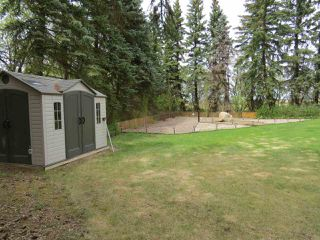 Photo 12: 43129 Range Road 154: Rural Flagstaff County House for sale : MLS®# E4202088
