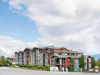 "Photo 31: 406 2242 WHATCOM Road in Abbotsford: Abbotsford East Condo for sale in ""Waterleaf"" : MLS®# R2474178"