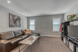 Photo 33: 82 MASTERS Villas SE in Calgary: Mahogany Detached for sale : MLS®# A1036911