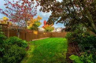 Photo 37: 8425 171A Street in Surrey: Fleetwood Tynehead House for sale : MLS®# R2511271