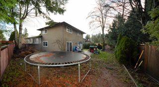 Photo 17: 13114 62B Avenue in Surrey: Panorama Ridge House for sale : MLS®# R2524253