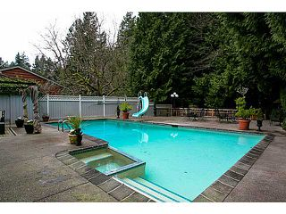 Photo 12: 5719 CRANLEY Drive in West Vancouver: Eagle Harbour House for sale : MLS®# V1023238