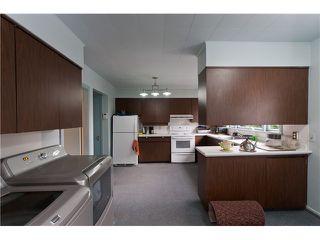 Photo 5: 2052 Inglewood Av in West Vancouver: Ambleside House for sale : MLS®# V1066221