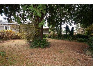 Photo 18: 2052 Inglewood Av in West Vancouver: Ambleside House for sale : MLS®# V1066221