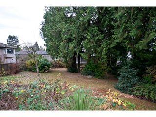 Photo 15: 2052 Inglewood Av in West Vancouver: Ambleside House for sale : MLS®# V1066221
